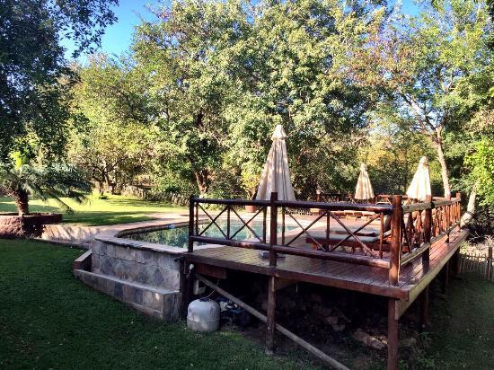 Marloth Park, Sudáfrica: photo0.jpg