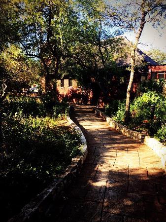 Marloth Park, Sudáfrica: photo3.jpg