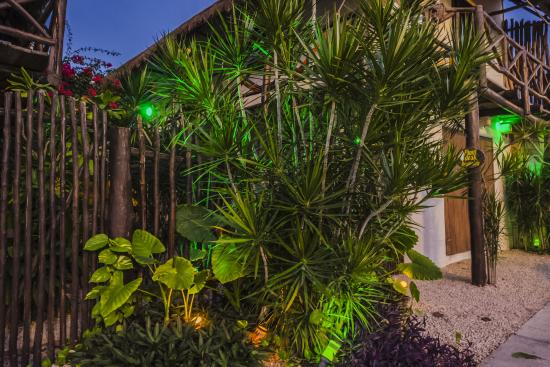 Lo Nuestro Petite Hotel: The front entranceway lit up at night.
