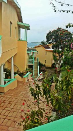 Bird Rock Beach Hotel: 20160423_065844_large.jpg