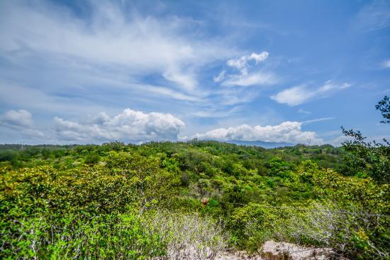 Panoramic View Near Rincon de la Vieja
