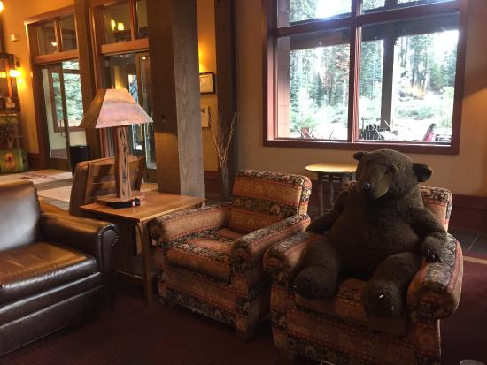"Wuksachi Lodge: ""resident' bear in general sitting area...everyone loves him"