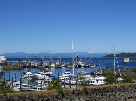 Port Hardy, Kanada: View over the harbour