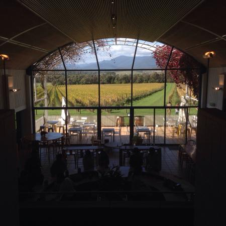 Coldstream, أستراليا: Great wine tasting 5ASD £2.50 and you get it back if you buy a bottle
