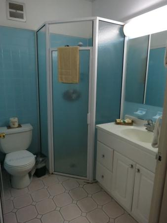Warm Mineral Springs Motel: Warm Mineral Springs, Mar 2016 - bathroom (showers only)