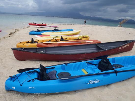 Denarau Island, Fiji: Waiting for the Guests!