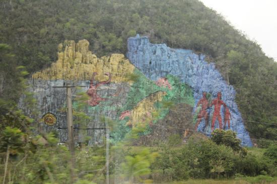 Mural de la prehistoria valle de vi ales picture of for Mural de la prehistoria