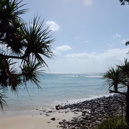 Noosa, Australien: Tea Tree Bay