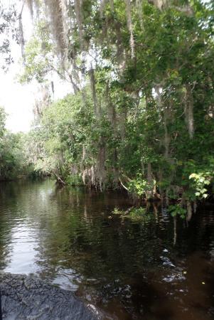 ДеЛанд, Флорида: St. John River