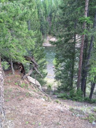 Кимберли, Канада: Steep, almost sheer drop to the river from a river view site
