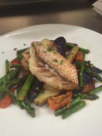 Newton, MA: Red Snapper Special Tonight