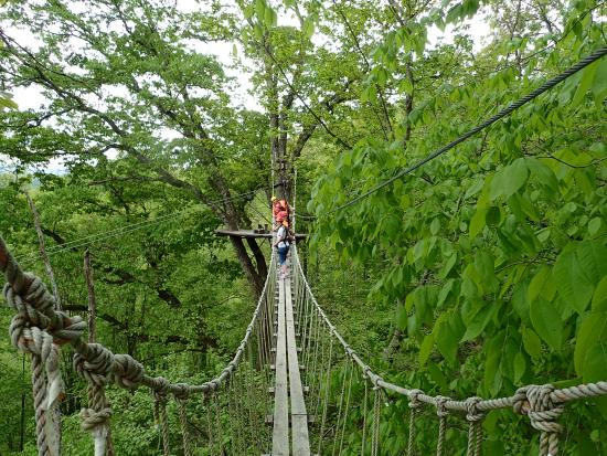 Half Of The Group Crossing Longest Rope Bridge
