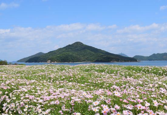 Flower Park Urashima