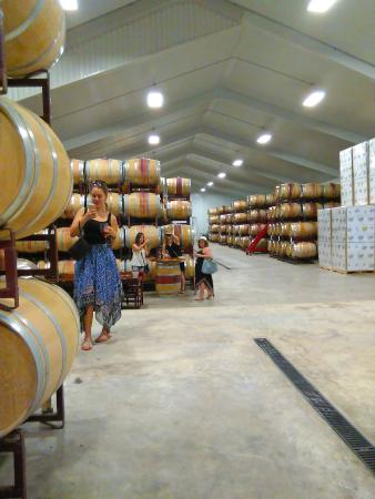 Stonewall, Teksas: White and red wine barrel room.