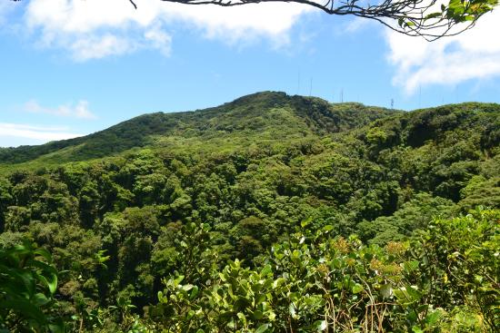 Mombacho Volcano Natural Reserve