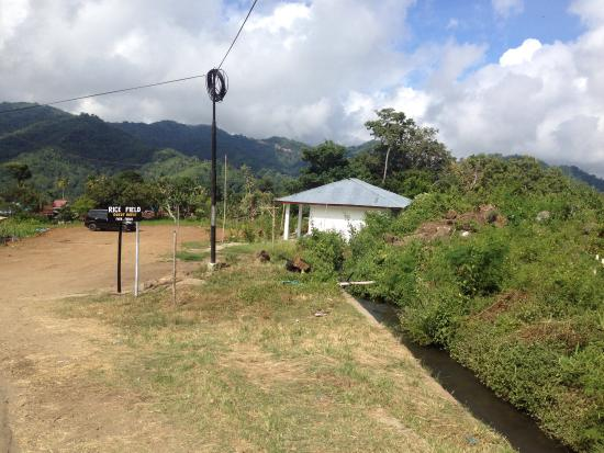 Moni Rice Field Guest House