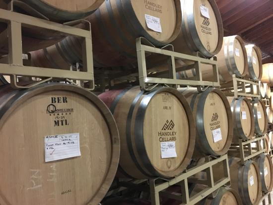 Handley Cellars Winery: Handley Cellars