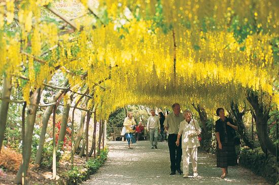 Llannerch Goch Luxury Cottages : Visit our National Trust Gardens at Bodnant