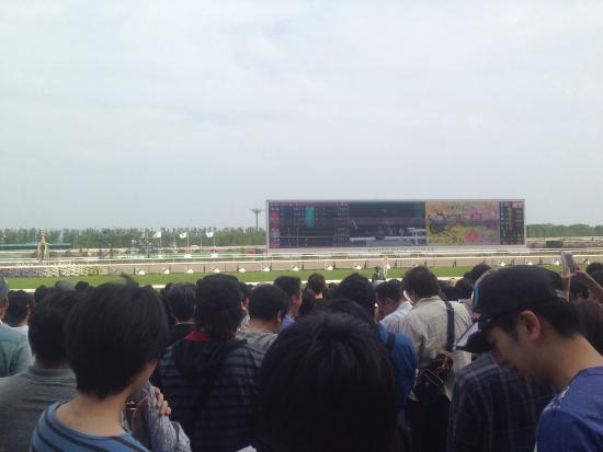 Kyoto Horse Racetrack: photo1.jpg