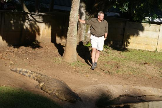 Southbroom, Νότια Αφρική: Crocodile talk