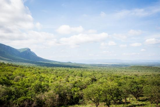 Lavumisa, Suazi: pristine bushveld on the Lebombo Mountains