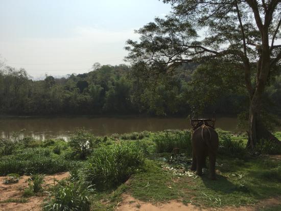 バン・シーエン・ロム, ラオス, 象の背中は思ったより高かったです 高いところが平気ならオススメ