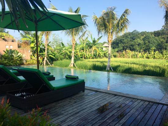 Tropical boutique resort