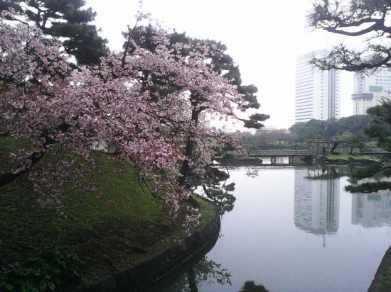 Préfecture de Tokyo Photo