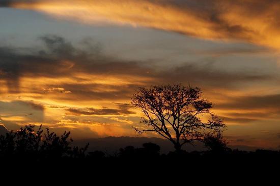 Leopard Hills Private Game Reserve, Afrika Selatan: photo6.jpg