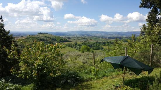 Certaldo, Italië: Uitzicht vanuit de tuin