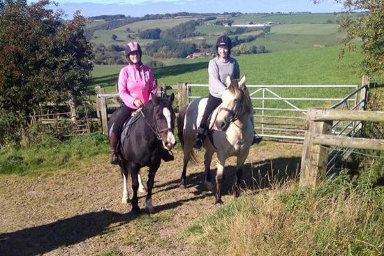 Long Mountain centre log cabins & Pony Trekking