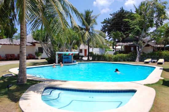 Pool - Picture of Quo Vadis Dive Resort, Cebu Island - Tripadvisor