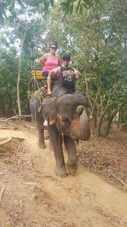 Kok Chang Safari Elephant Trekking: 20160501_111847_009_01_large.jpg