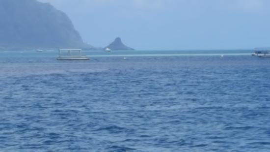 Captain Bob's Adventure Cruises: China hat landmark in the background- going to the sandbar