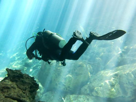 DiveMex : Cenote Garden Eden; wundervoll!
