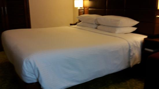 Hilton Garden Inn New Delhi / Saket: Schlafstelle