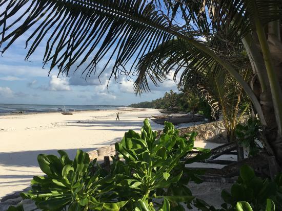 Zanzibar Bahari Villas: Deck chair right at the beach, cocos palms provide sun protection