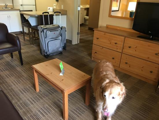 Extended Stay America - Nashville - Franklin - Cool Springs: King Suite Livingroom with Kitchenette in back