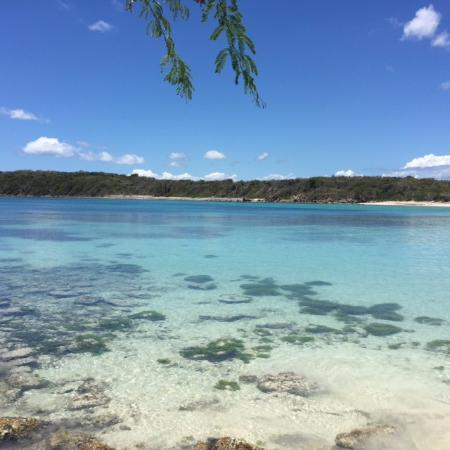 Hix Island House: BEACHES ARE KILLER