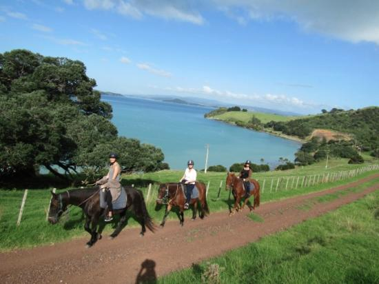 Isla Waiheke, Nueva Zelanda: Kind of look like pros but really not!