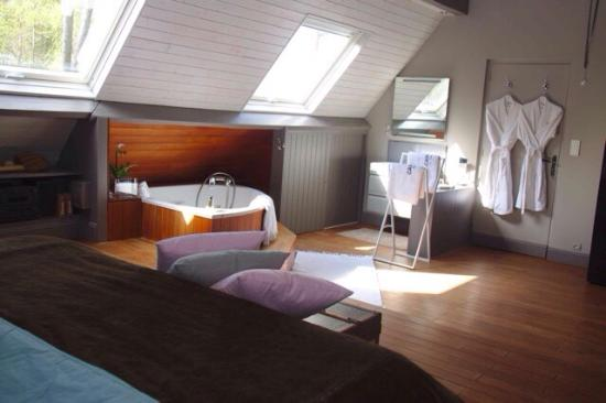 Chambre Polo double supérieure et sa salle de bains en open Space ...