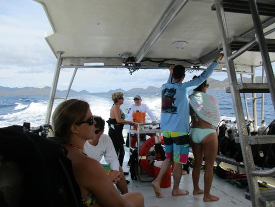 Cruz Bay, St. John: The ride out to the Wreck of the Rhone with Low Key Watersports