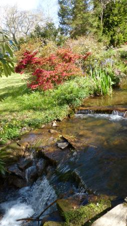 Chycara House: Stream flows through the grounds and feeds the lakes