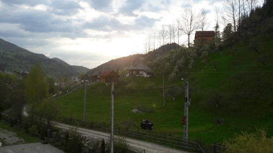 Photo of Hotel Paltinis Borsa