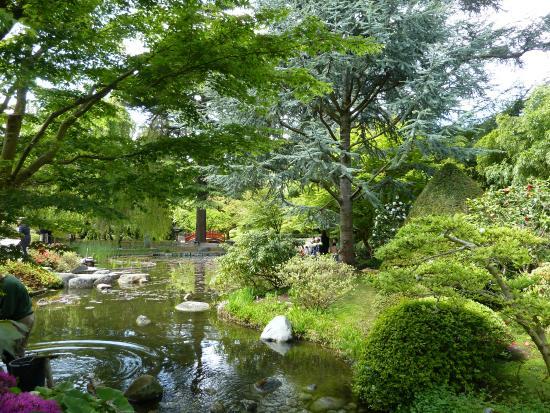 Albert kahn gardens photo de albert kahn musee et jardins boulogne billancourt tripadvisor - Jardin d eveil boulogne billancourt ...