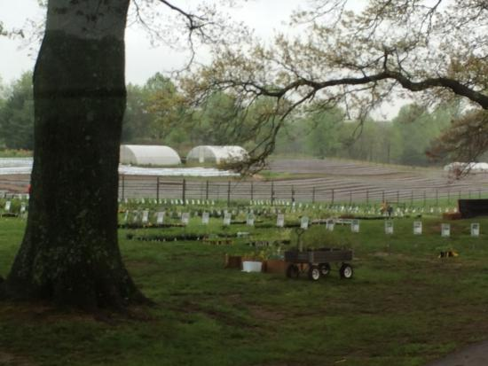Coverdale Farm Photo