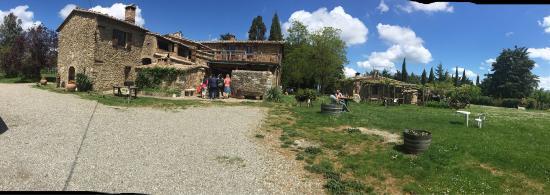Montalcino, Italia: photo3.jpg
