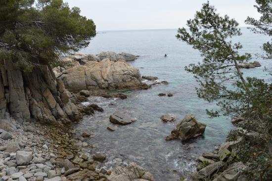 Costa Brava, Spain: Una de las calas del camino de ronda al golfet