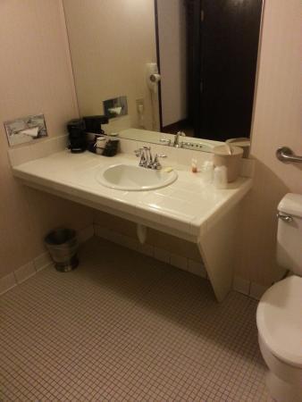 Circus Circus Manor Motor Lodge: Bathroom Vanity