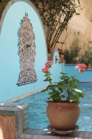 Riad Norma Photo